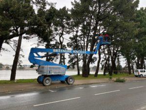 Elagage nacelle location Lorient Morbihan Bretagne